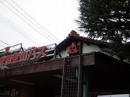 傘松ケーブル13