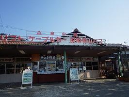 傘松ケーブル43