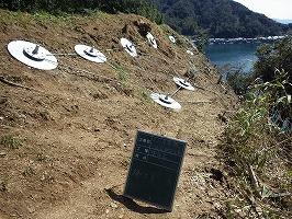 平田亀島線18