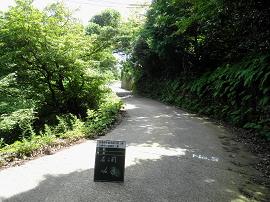 役場傘松線02